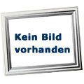 Specialized Aethos Frameset Satin Carbon/Flake Silver 52